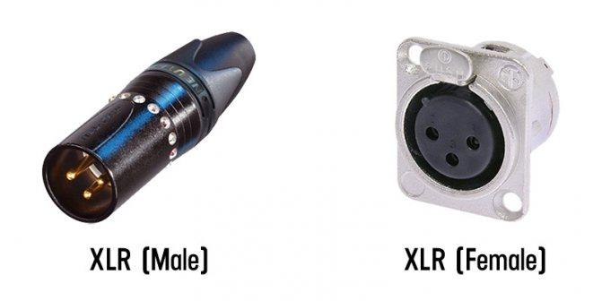 Male и Female разъёмы