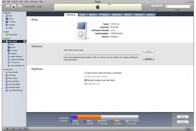 Приложение iTunes с подключенным плеером